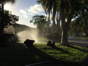 Commercial lawn care maintenance lighthouse point