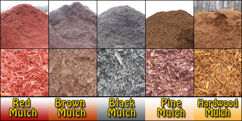 Different types of mulch for Different color rocks for landscaping