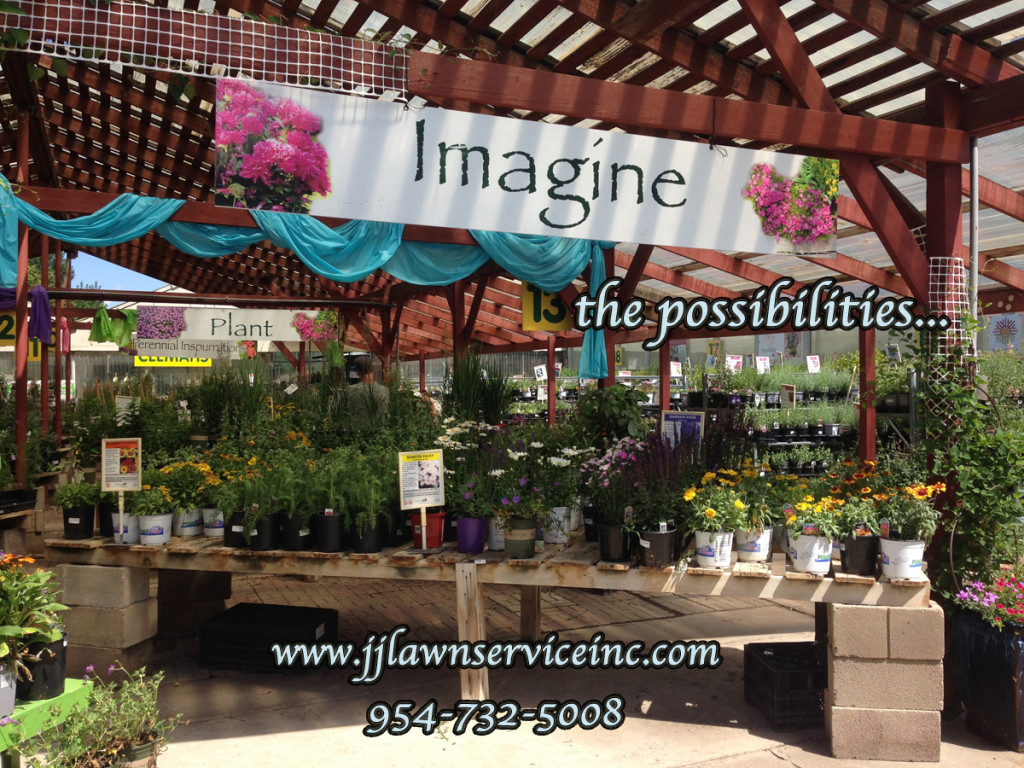 imagine the possibilities landscape design