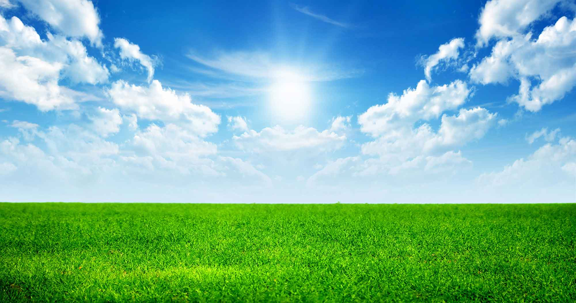 sky-grass-background-reduced.jpg